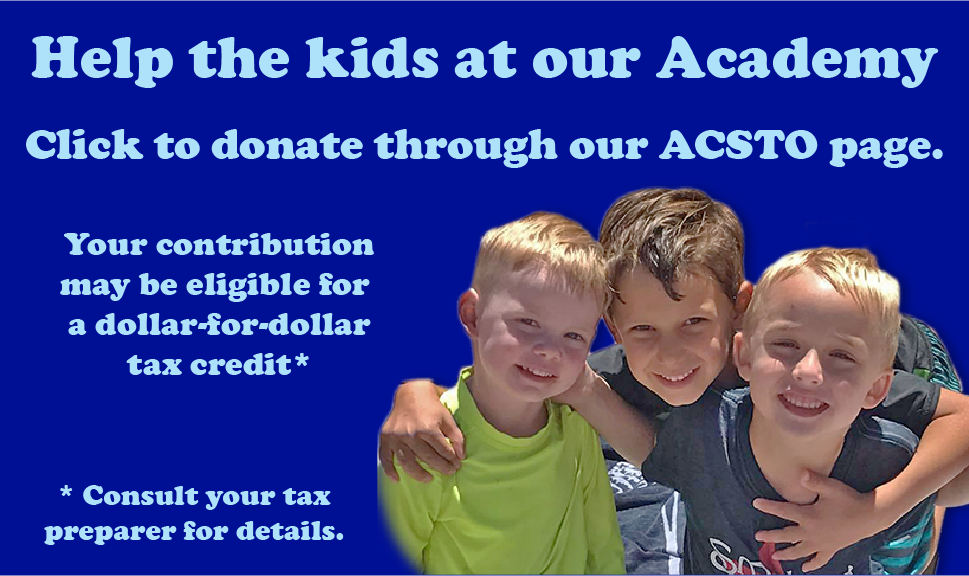Link to BSLC Academy's ACSTO page