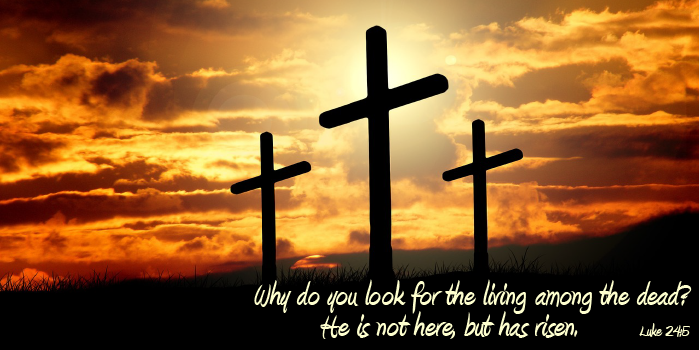 Image of crosses with text from Luke 24:5